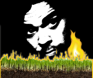 a Gawker Artist on Fire